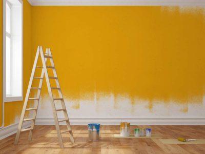Quel Rouleau Et Quelle Couleur De Peinture Mur Pour Mon
